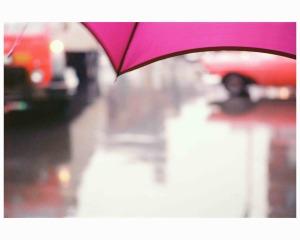 薄紅色の傘、1950年代のコピー